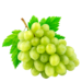 Grape - White